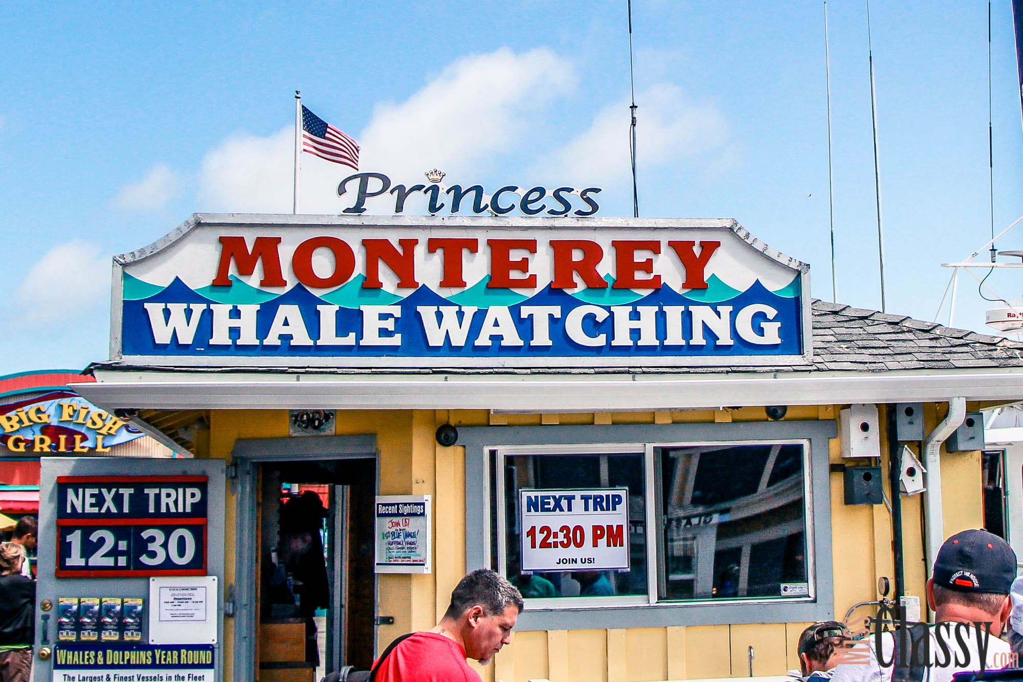 Whale Watching in Monterey_05