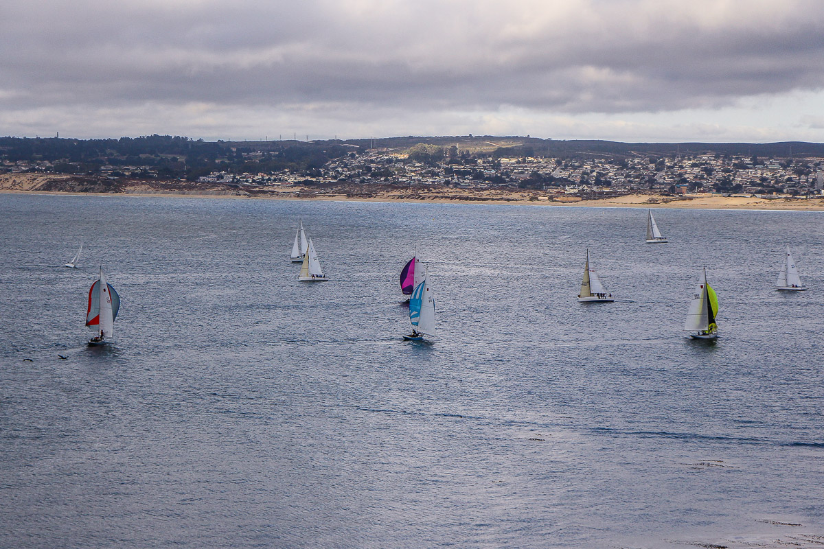 Monterey und Whale Watching in der Monterey Bay, Entspannen auf der Dachterrasse im Monterey Plaza Hotel & Spa, USA, Reise Blog, Reisebericht, Westküste, Roadtrip, Kalifornien, Miss Classy