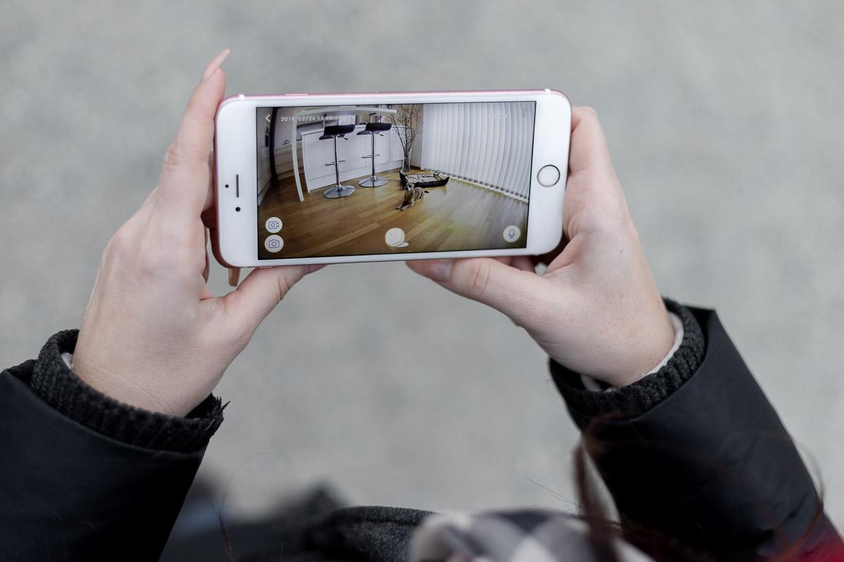 Furbo Hundekamera, App